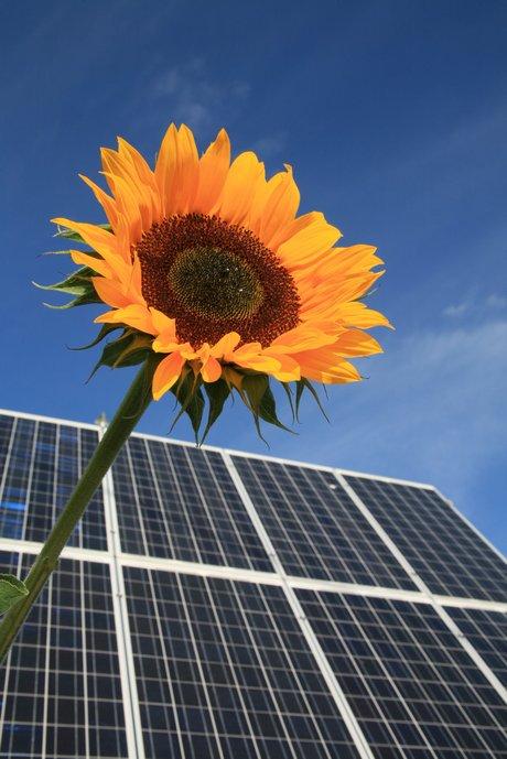 foerderung hausbau energie